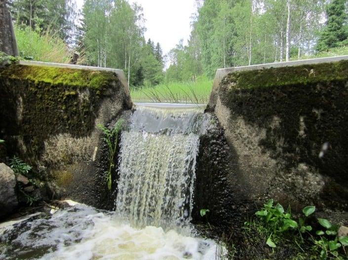 Härkälänjoki - jokimelonta